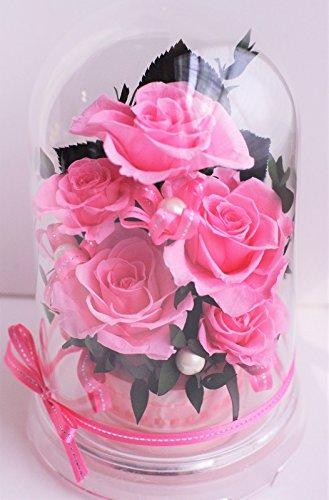 選べる8color ドームケース入りアレンジ プリザーブドフラワー (桃 pink ピンク) B07BQ41M4Y 桃 pink ピンク 桃 pink ピンク