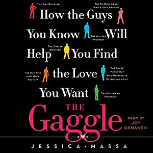 The Gaggle Audiobook