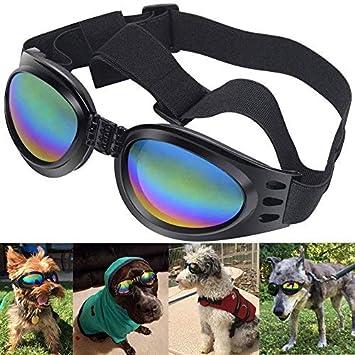 Gafas de sol para perro de Alfie, gafas para mascotas, gafas ...