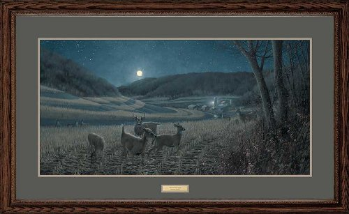 Night Moves - Whitetail Deer Framed Limited Edition Print by Michael Sieve