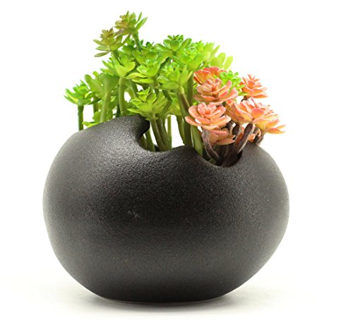 - Mecai Ceramic Succulent Flowers Pot Water Planting Plants Egg Shaped Planter Black,Office Decor for Desk