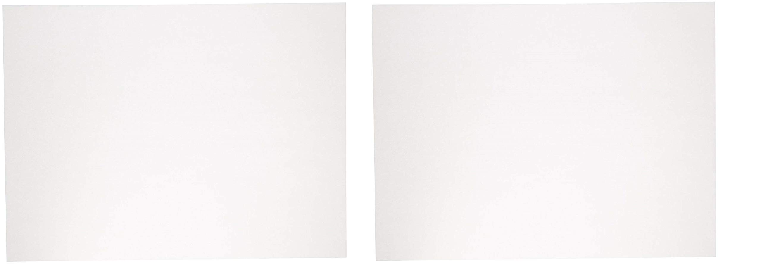 Sax Sulphite Drawing Paper, 60 lb, 18 x 24 Inches, Extra-White, Pack of 500 (2 X Pack of 500)