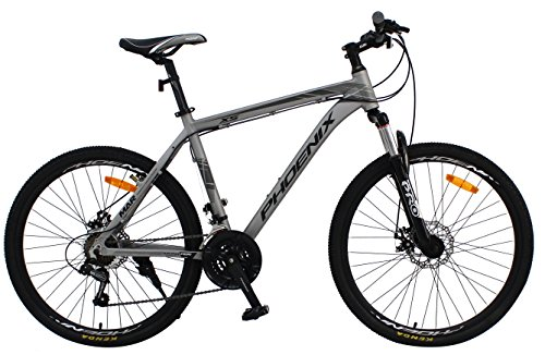Phoenix Bicycle PF 20 Inch Aluminum Light Weight 27lb Folding Bike with Disk Brake and Shimano 7 Speed (20 Inch Folding)