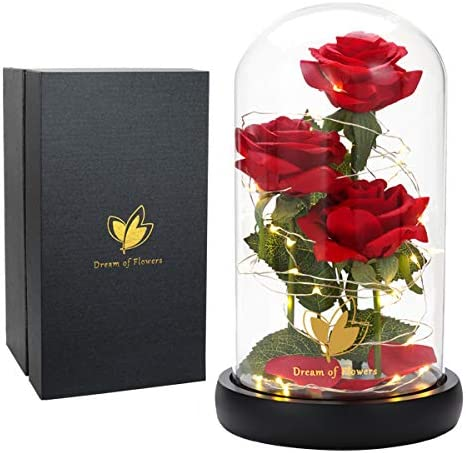 Mother's Day Birthday Gifts for Mom Grandma Beauty and The Beast Rose Flowers, LED Lights in Glass Dome on Wood Base, Warm Light Mode, Fallen Red Petals, Multi Use for Home/Office or Home Decorations