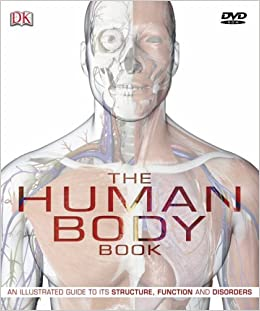 Buy the human body book the ultimate visual guide to anatomy buy the human body book the ultimate visual guide to anatomy systems and disorders book dvd rom book online at low prices in india the human body fandeluxe Gallery