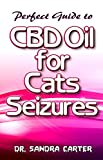 perfect guide to CBD Oil for Cats seizures: Its