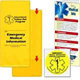 StoreSMART® - Yellow Dot Pocket w/ Yellow Decal Sticker for Car Window - 10-Pack - YDOTPOLY-10