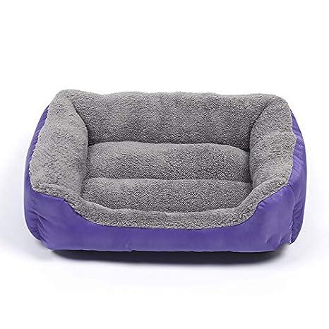 XIERU Cama de Perro medianos, Sofá Cama para Cojín Cómoda Suave para Impermeable Base-Morado-m: Amazon.es: Productos para mascotas