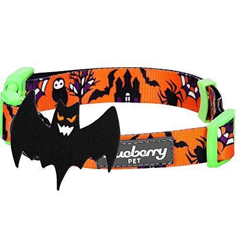 Pictures of Blueberry Pet 8 Patterns Halloween Mystery Disguise 7
