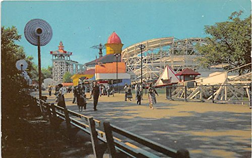 Flying Turns, Riverview, Chicago's Famos Amusement Park Chicago, Illinois, IL, USA Postcard Post Card