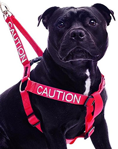 CAUTION Red Color Coded L-XL Non-Pull Dog Harness (Do Not Approach) PREVENTS Accidents By Warning Others of Your Dog in Advance