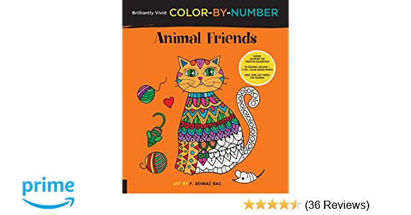 Amazon Brilliantly Vivid Color By Number Animal Friends