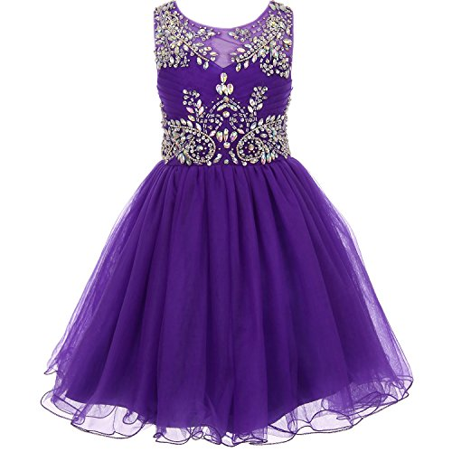 CrunchyCucumber Little Girls Unique Design AB Stone Bodice Open Back Tulle Wired Skirt Flower Girl Dress Purple - Size 6