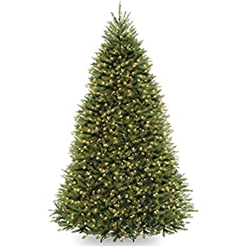 National Tree 10 Foot Dunhill Fir Tree with 1200 Dual LED Lights and 9  Function Footswitch - Amazon.com: National Tree 10 Foot Dunhill Fir Tree With 1200 Dual