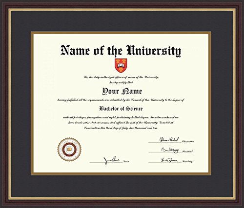 ArtToFrames 16x20 Diploma Frame, Framed in Mahogany and Gold Slope, Diploma-732-89/596-0066-83120-YMAH