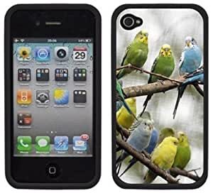 Parakeets Birds Handmade iPhone 4 4S Black Hard Plastic Case