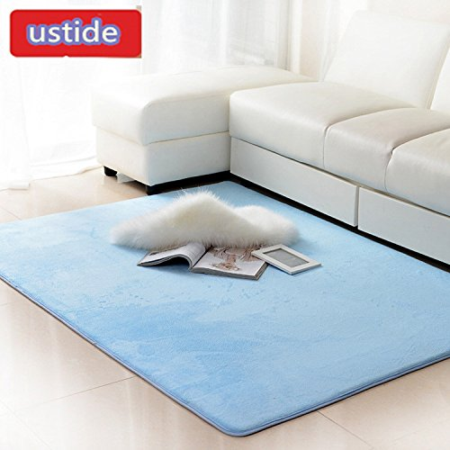 Exceptional Amazon.com: Ustide Skyblue Soild Floor Rug Livingroom Carpet Coral Fleece  Soft Rug Memory Foam Rugs Set Modern Non Slip Area Carpet For Bedroom/sofa  ...