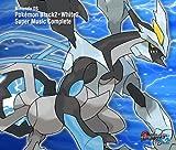 Pokemon Black2 White2
