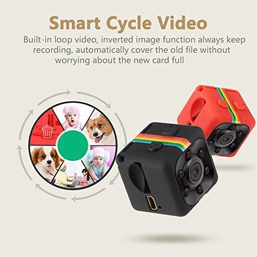 Springdoit Cámara Mini DVR 1080P HD Liviana con función de visión Nocturna Que monitorea la Seguridad de la Oficina -...