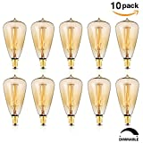 lightbulbs edison - KINGSO 10 Pack E12 Vintage Edison Light Bulbs 40W 110V Antique Dimmable Nostalgic Tungsten Filament Candelabra Base Incandescent Lamp Squirrel Cage Style Bulbs ST48 for Home Light Fixtures