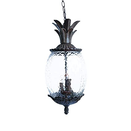 Acclaim 7516bc lanai collection 3 light outdoor light fixture acclaim 7516bc lanai collection 3 light outdoor light fixture hanging lantern black coral aloadofball Gallery