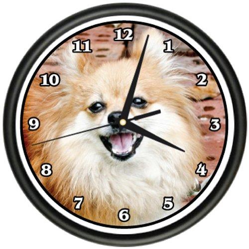 MINI POMERANIAN Wall Clock dog doggie pet breed gift