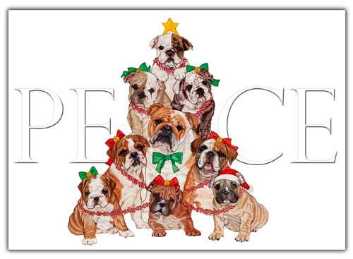 Bulldog Christmas Cards Peace : 10 Holiday Cards with Red Envelopes - ADORABLE!