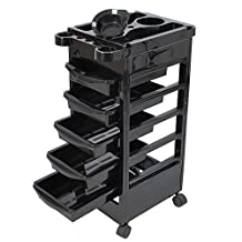 Salon SPA Trolley Storage Cart Coloring Beauty Salon Rollabout Hair Dryer Holder