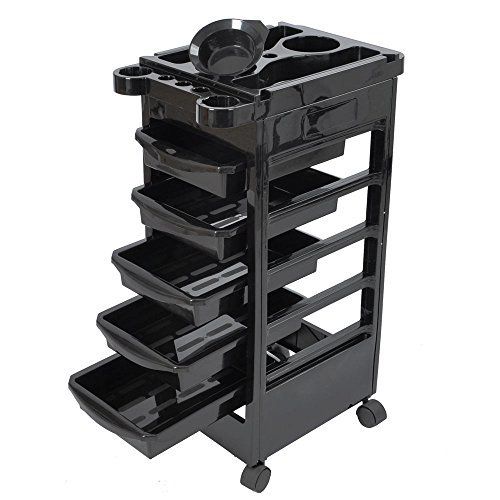 Salon SPA Trolley Storage Cart Coloring Beauty Salon Hair Dryer Holder with 5 Drawers for Tool (Salon Accessories)