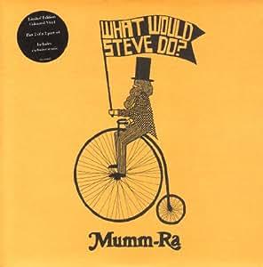 What Would Steve Do? Pt. 2 [Vinyl]