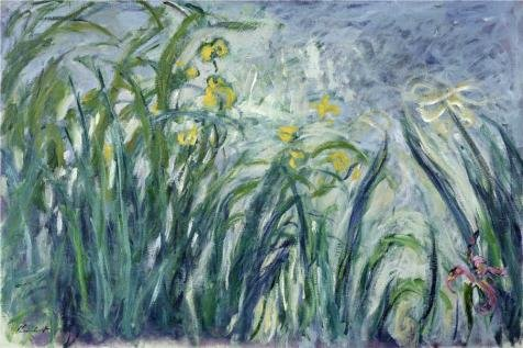 'Yellow Irises And Malva, 1924 By Claude Monet' Oil Painting, 12x18 Inch / 30x46 Cm ,printed On Perfect Effect Canvas ,this Reproductions Art Decorative Prints On Canvas Is Perfectly Suitalbe For Home Office Artwork And Home Artwork And Gifts - Micro Plane Spiral Cutter