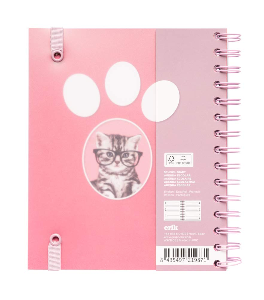 Amazon.com : Studio Pets Cats 2019-2020 Academic Diary ...