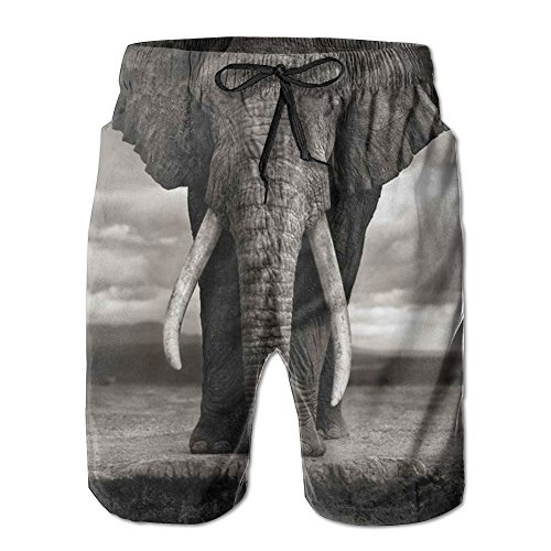 Sssssddd Sketch Thailand Elephant of Africa Men's Tie Tropical Quick Drying Shorts Swimming Volleyball Beach Trousers by Sssssddd