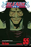 Bleach, Vol. 55: The Blood Warfare