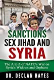 img - for Sanctions, Sex Jihad and Syria: The A to Z of NATO's War on Syria's Widows and Orphans book / textbook / text book