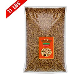 FROLIC WINGS Natural Worms 11 lbs Mealworms, 100 Percent Natural Dried Delicious Mealworms Treats for Chickens, Wild Birds, Fish, Reptiles