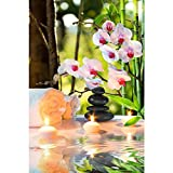 Pitaara Box PB Spa With Candles & Orchids Unframed Canvas Painting 16 x 24inch