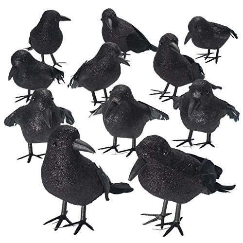[Shrocko Halloween Realistic Looking Feathered Crows (9 pcs) Props For Home Décor and Party Decoration Raven] (Bird Halloween)