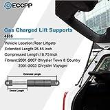 ECCPP 2pcs Rear Liftgate Lift Supports Strut rods