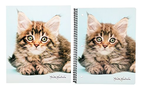 Cute Puppy or Kitten Back To School Set – Pocket Folder and Spiral Notebook (Fluffy Kitten) - Spiral Cat
