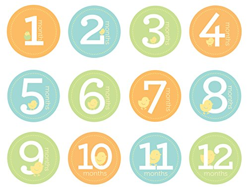 Pearhead First Year Monthly Milestone Photo Sharing Baby Belly Stickers 112 Months Neutral