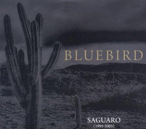 Saguaro (1995-2003)