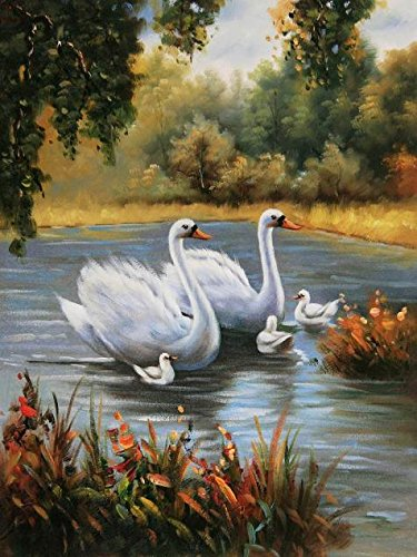 'Swans In The Lake' Oil Painting, 16x21 Inch - Religion In America Sixth Edition