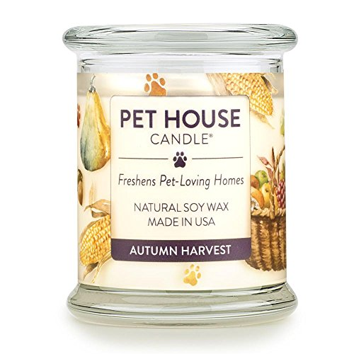 One Fur All - 100% Natural Soy Wax Candle, 20 Fragrances - Pet Odor Eliminator, Up to 60 Hours Burn Time, Non-Toxic, Eco-Friendly Reusable Glass Jar Scented Candles - Pet House Candle, Autumn Harvest