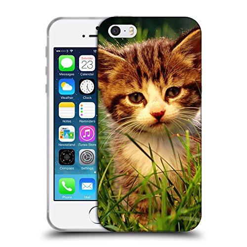 Just Phone Cases Coque de Protection TPU Silicone Case pour // V00004261 chaton rouge joue sur l'herbe // Apple iPhone 5 5S 5G SE