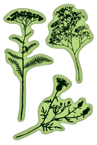 Rubber Stamps Inkadinkaclings - Inkadinkaclings Rubber Stamps That Cling, Field of Flowers