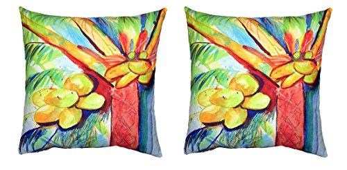 Pair of Betsy Drake Cocoa Nut Tree No Cord Pillows 18 Inch X 18 Inch price
