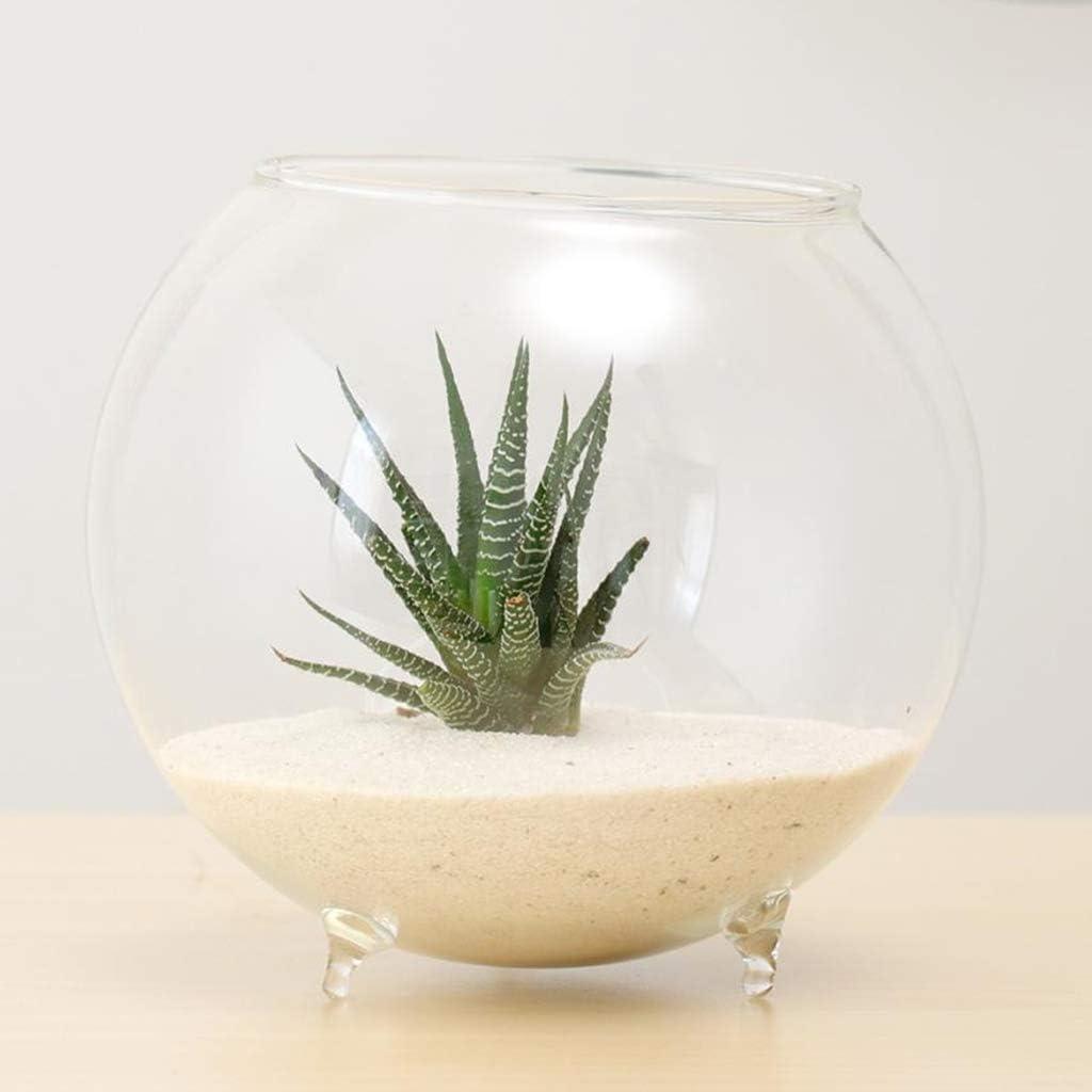 Cuenco de Cristal para Bodas VANKOA arreglos Florales para centros de Mesa Ocasiones Especiales Jardines de Velas
