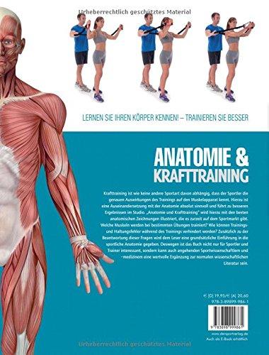 Anatomie und Krafttraining Anatomie & Sport, Band 1 : Muskeln in ...