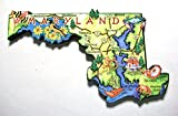 Maryland the Old Line State Artwood Jumbo Fridge Magnet